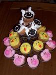 Emma's Birthday Cupcakes