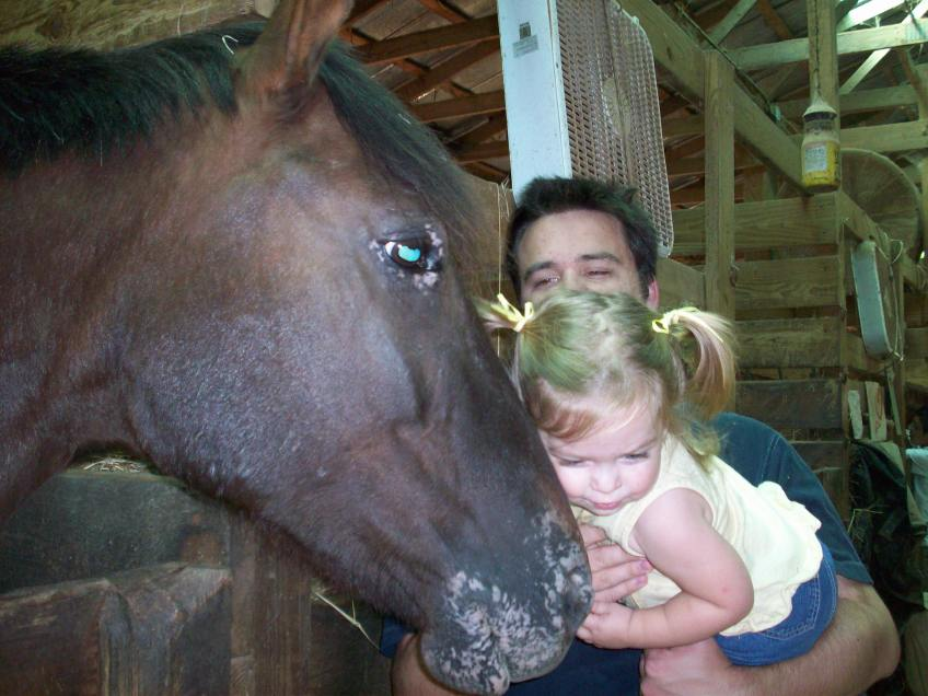 Chloe just loved giving the huge horse kisses!