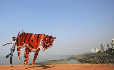 International Kite Festival in India