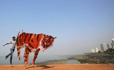 International Kite Festival in India